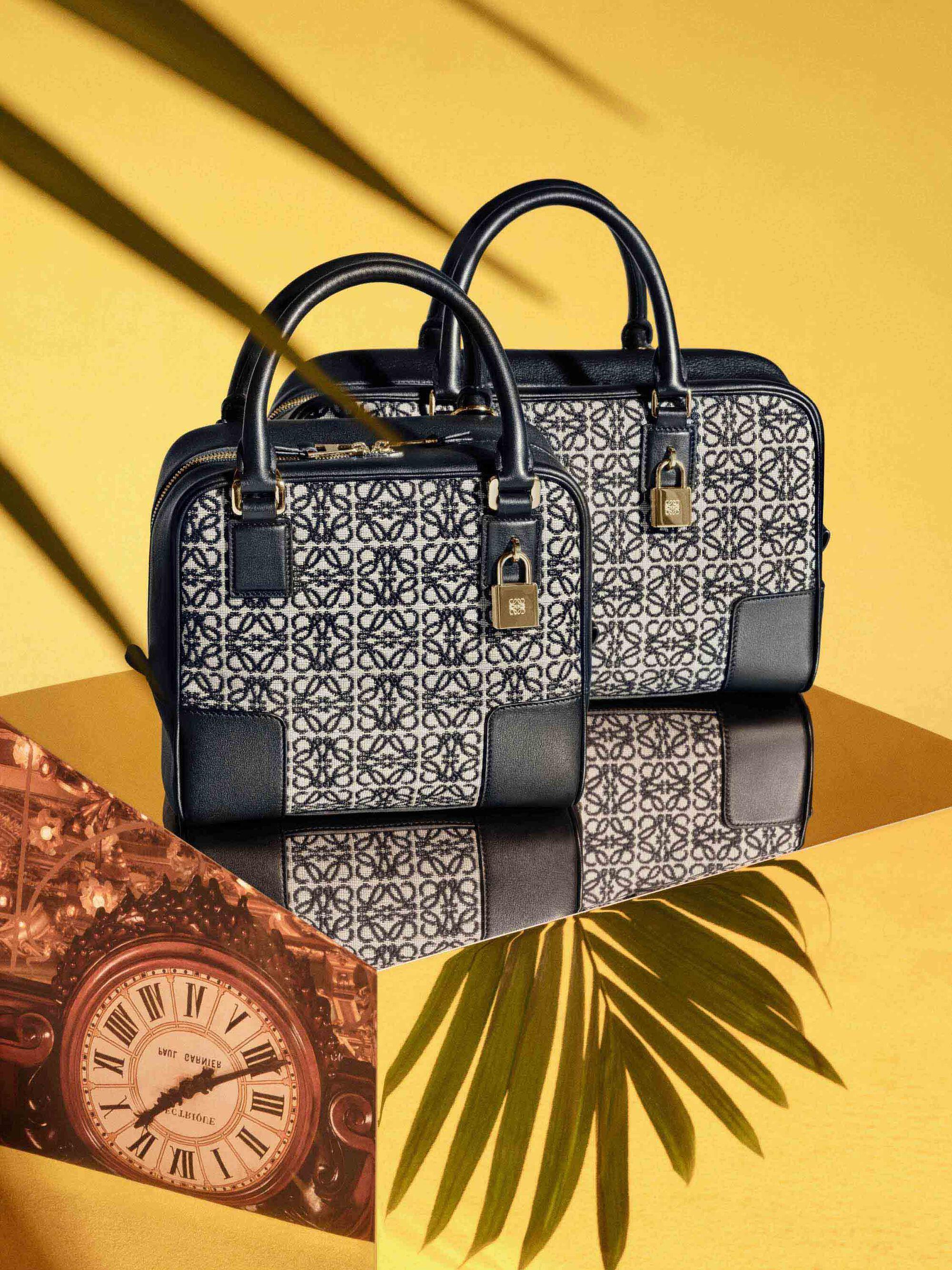 LOEWE The Amazona bag 價格以官方為準確