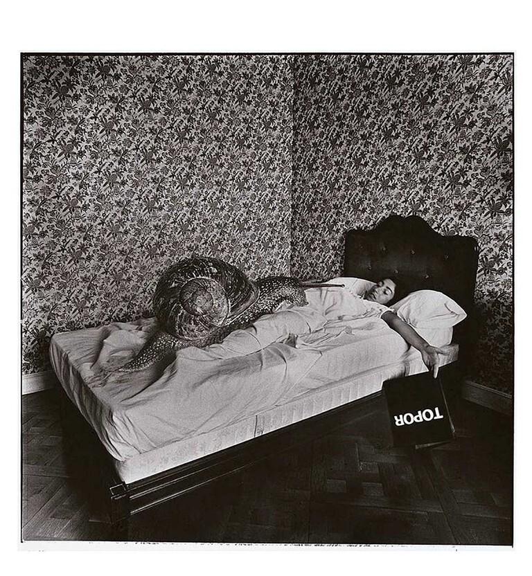 """Fundació Foto Colectania - Joan Fontcuberta """"CARGOL TREU BANYA. HOMENATGE A TOPOR"""" 1976"""