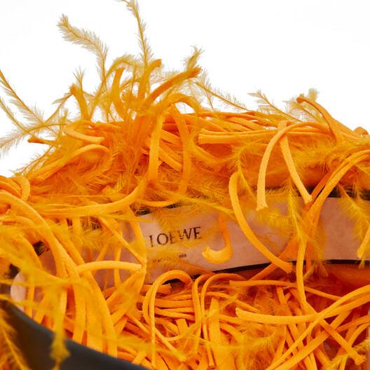 LOEWE Diadema Plumas Amarillo Mango front