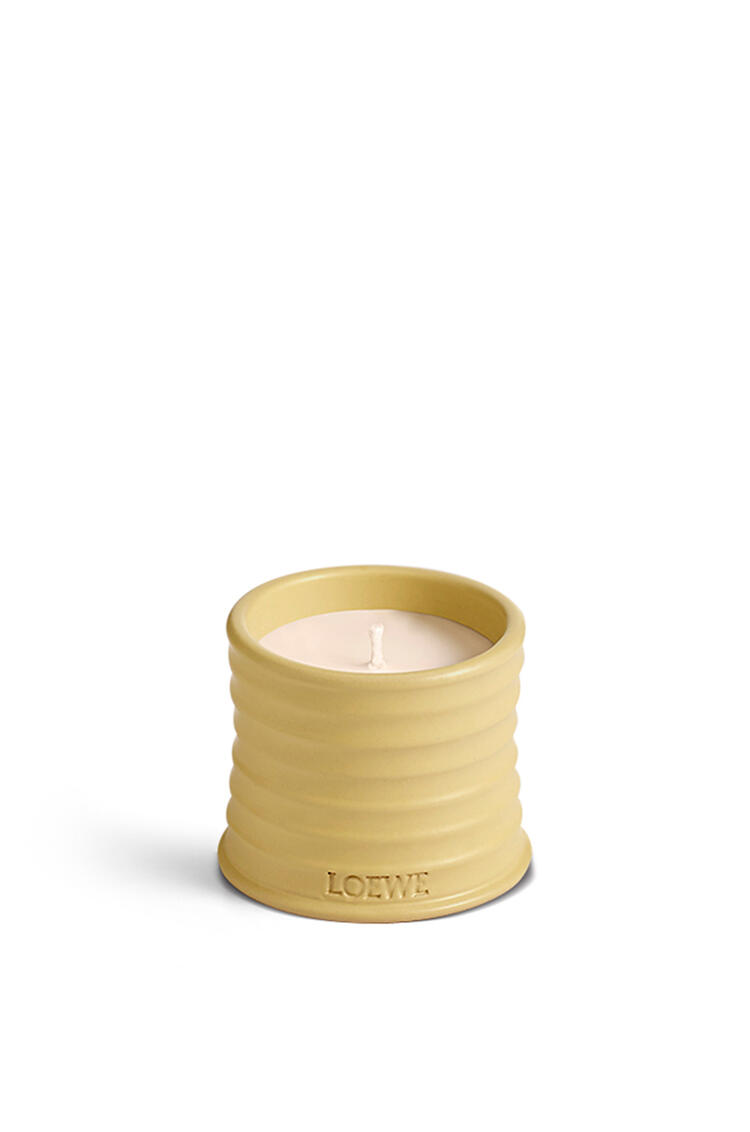 LOEWE Honeysuckle candle Yellow pdp_rd