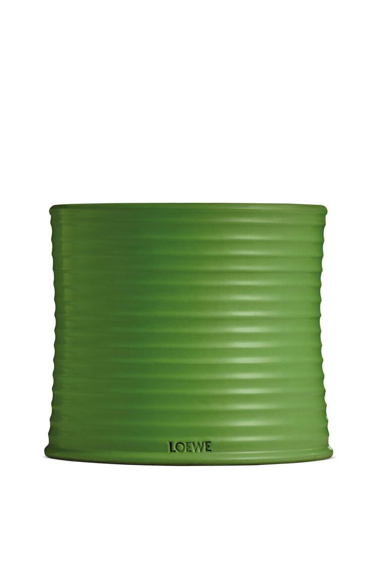 LOEWE Large Luscious Pea candle Light Green pdp_rd