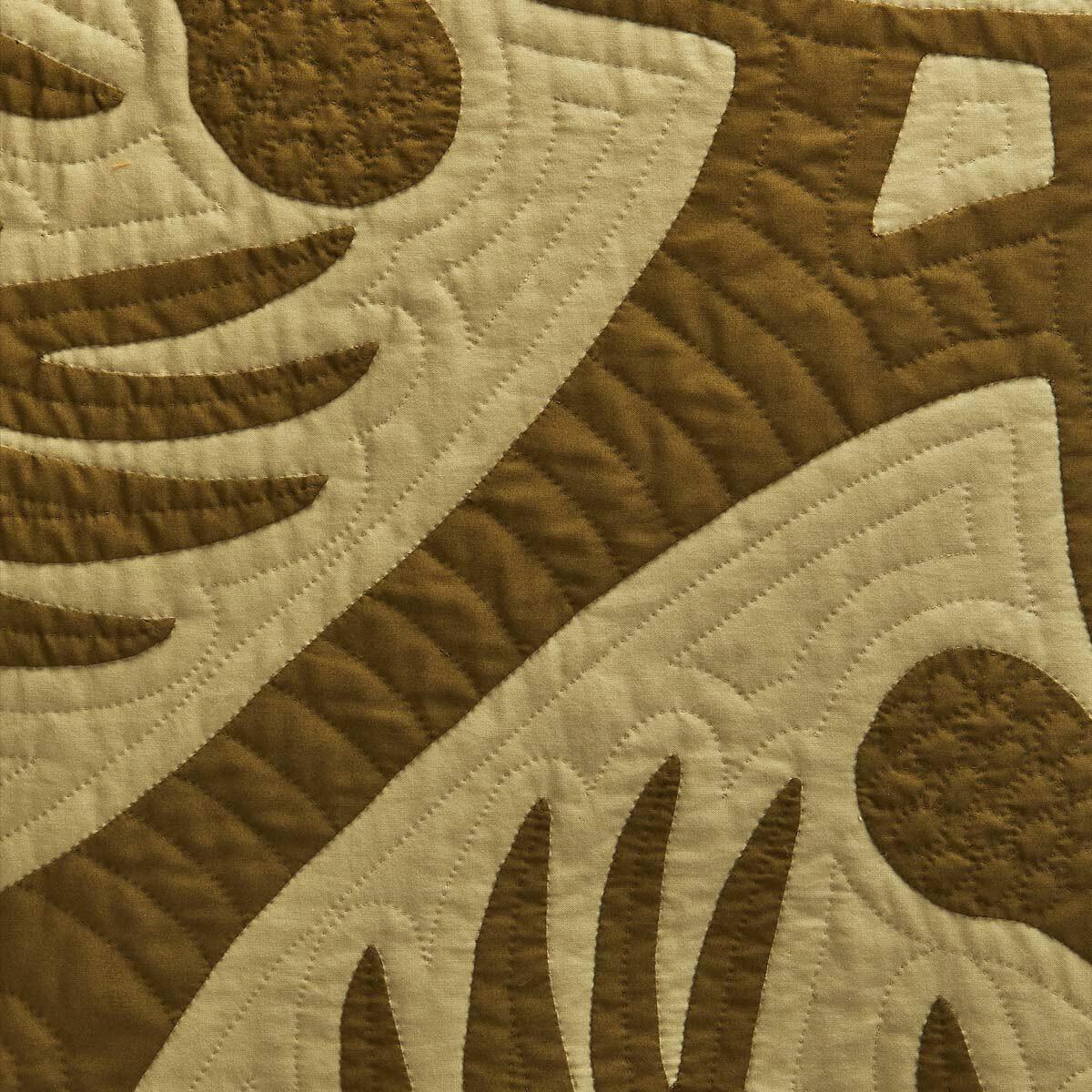 230X230 Blanket Palms