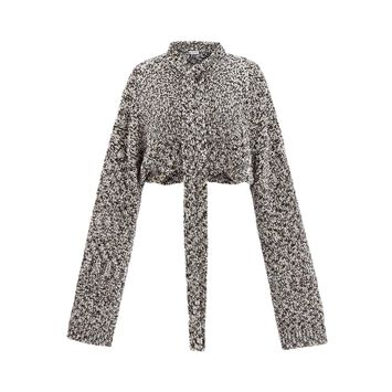 LOEWE Cropped Metallic Sweater Gris Claro front