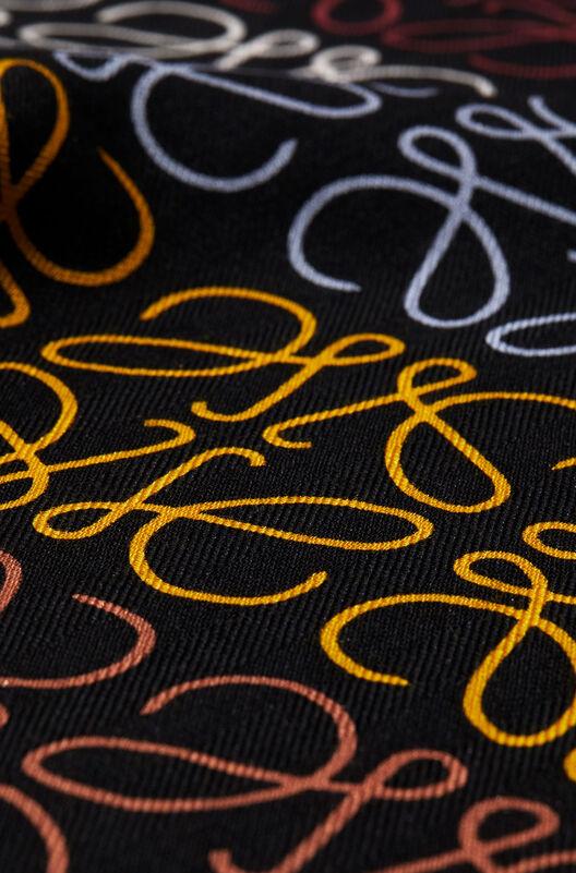 LOEWE 45X200 スカーフアナグラムINライン マルチカラー/ブラック all