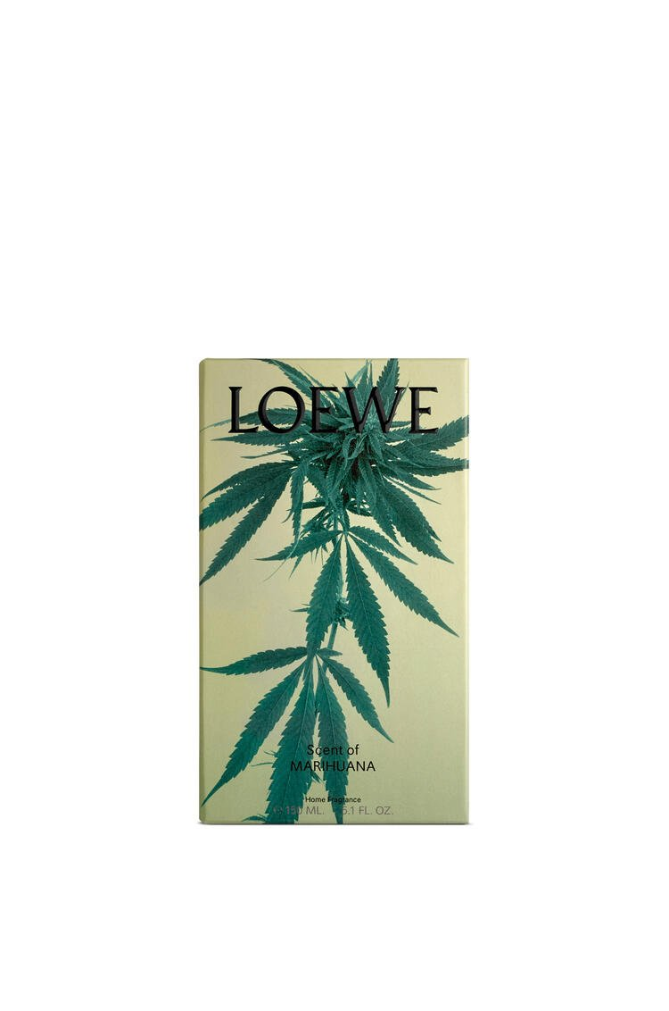 LOEWE Scent of Marihuana room spray Dark Green pdp_rd