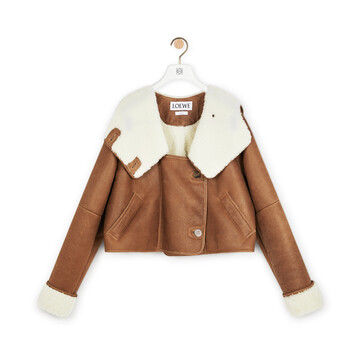 LOEWE Shearling Jacket Dark Brown front