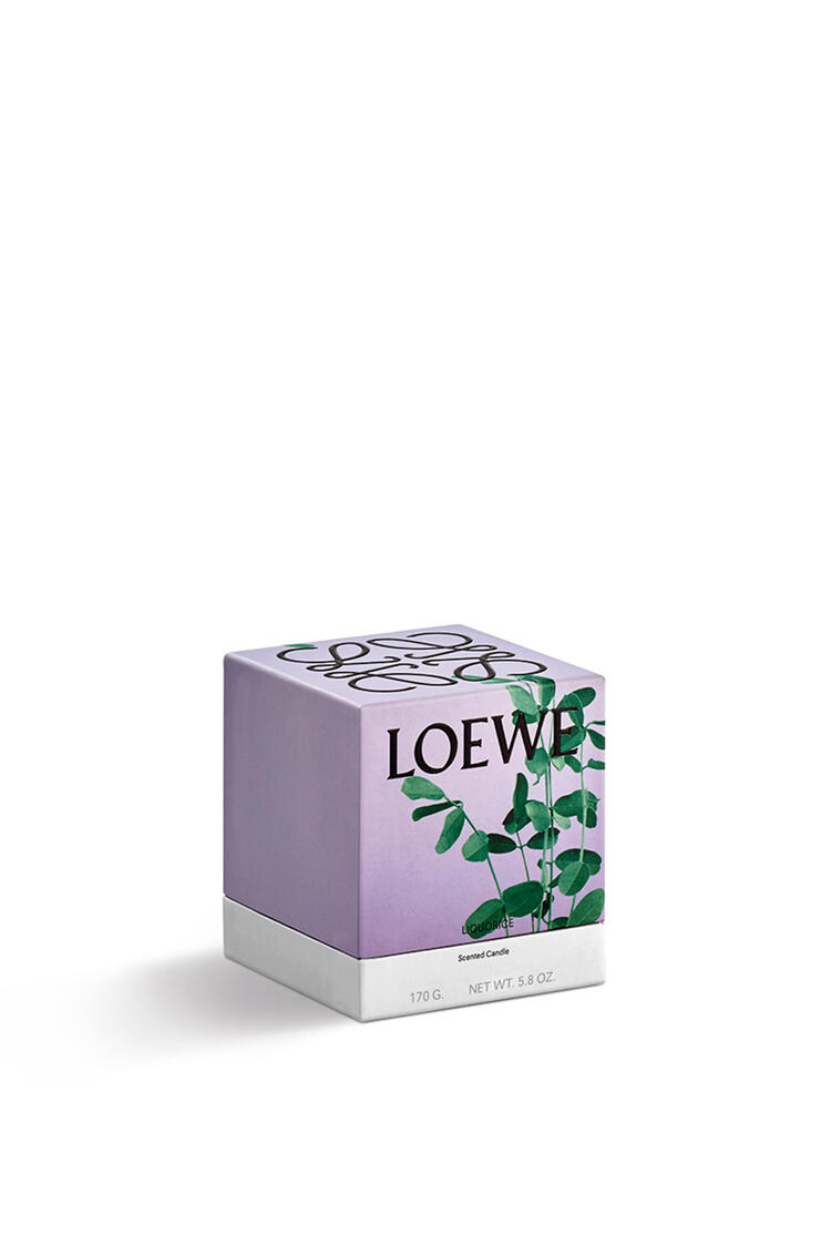 LOEWE Liquorice candle Black pdp_rd