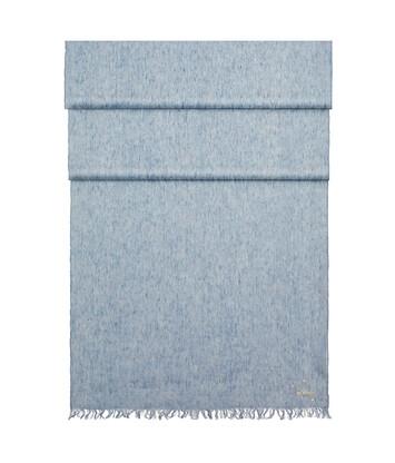 LOEWE 70X185 Paula Scarf Light Blue front