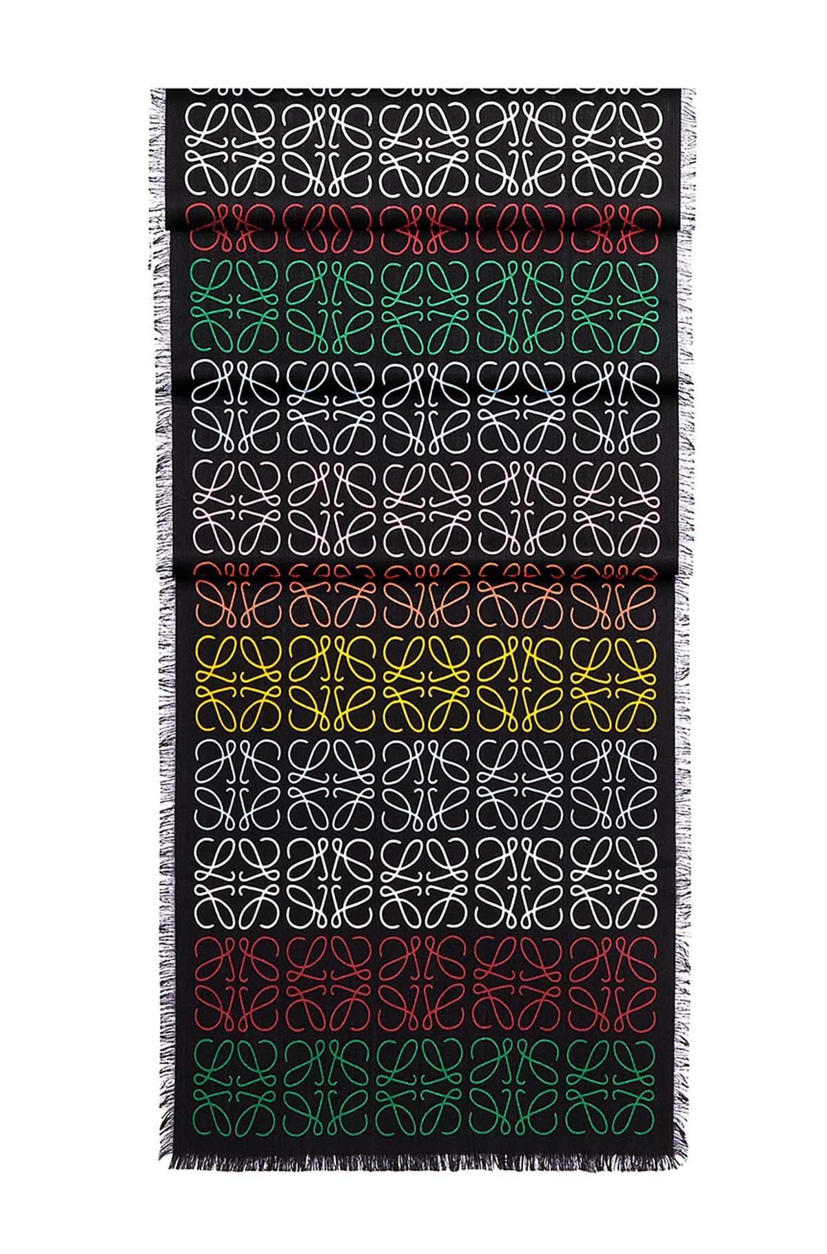 LOEWE 45X200 スカーフアナグラムINライン マルチカラー/ブラック front