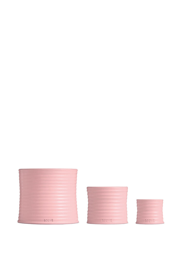 LOEWE Medium Ivy candle Light Pink pdp_rd