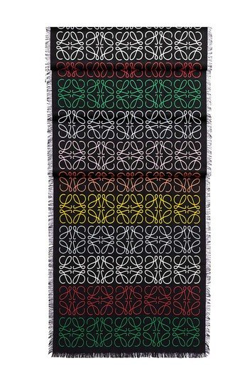 LOEWE 45X200 Anagram Scarf Multicolor/Negro front