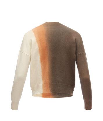 LOEWE Cropped Sweater Tie & Dye Gris/Beige front
