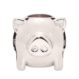 LOEWE Animal Big Dice 金属灰 front
