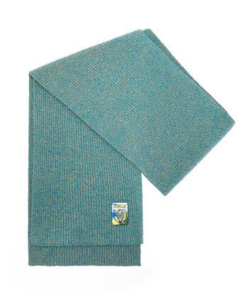 LOEWE Melange Knit Scarf Verde Esmeralda front