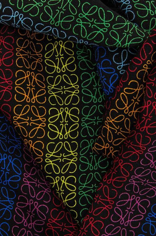 LOEWE 70X200  Anagram Scarf Black/Multicolor front