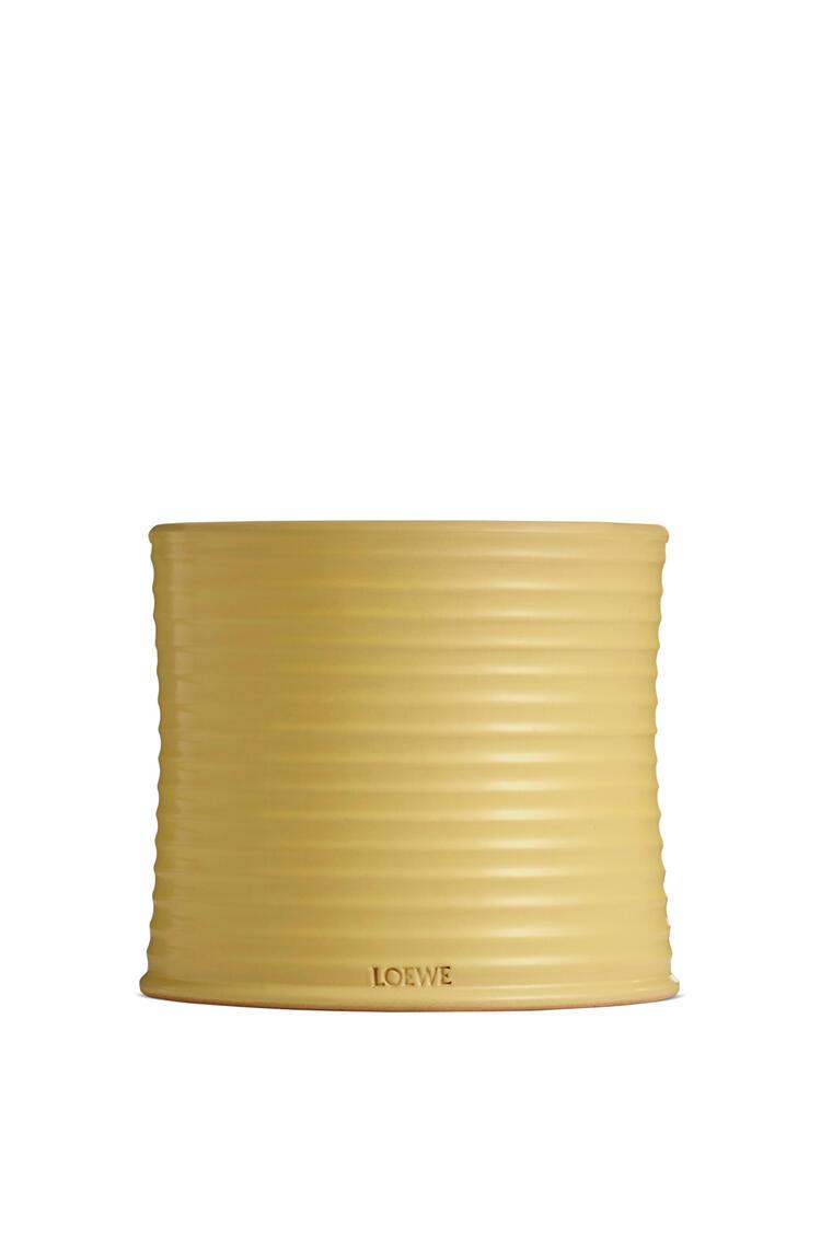 LOEWE Medium Honeysuckle candle Yellow pdp_rd