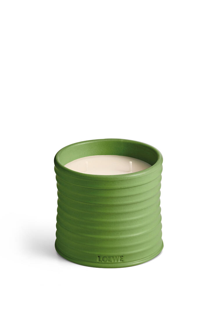 LOEWE Medium Luscious Pea candle Light Green pdp_rd