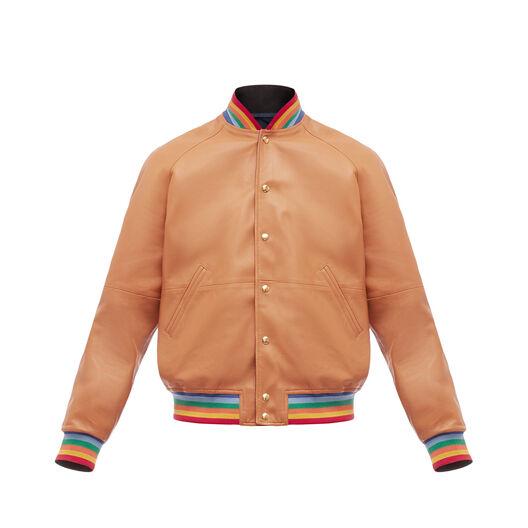 LOEWE Reversible Blouson Rainbow Rib Bronceado/Multicolor front