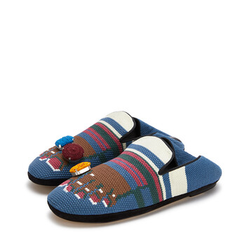 LOEWE Foot Slipper Blue/Brown front