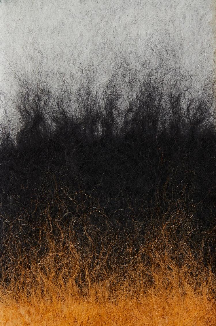 LOEWE Bufanda en lana mohair con rayas Verde Oscuro/Gris pdp_rd