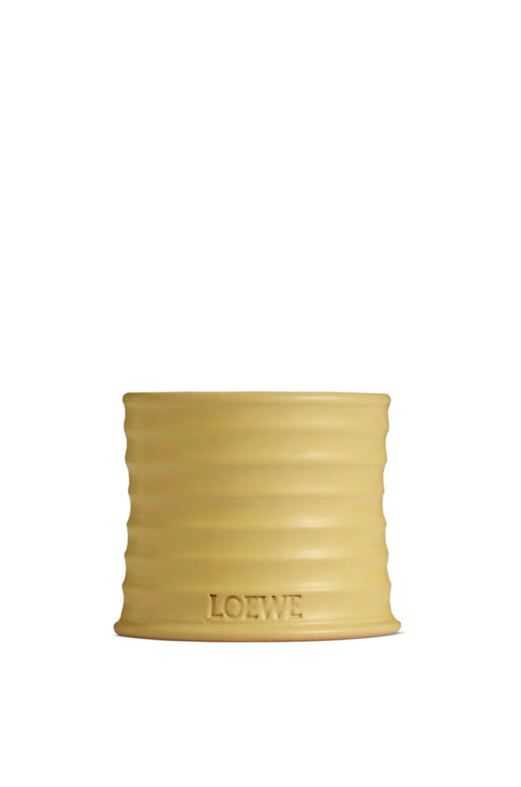LOEWE Honeysuckle candle Yellow pdp_rd