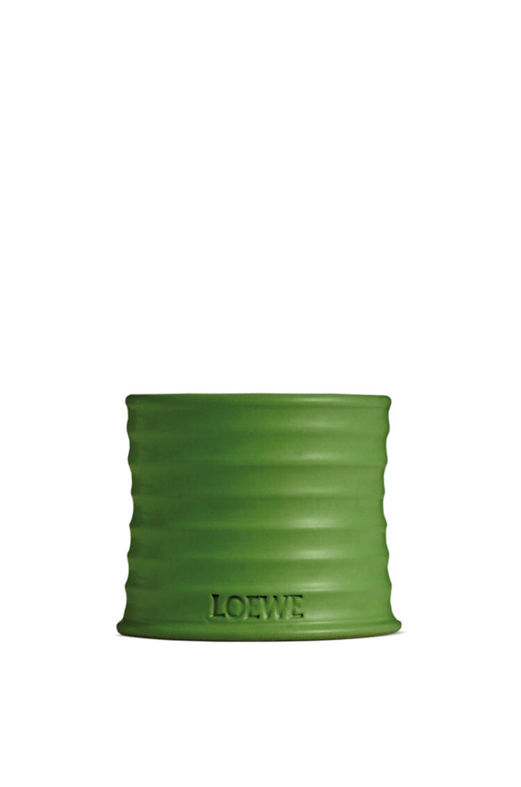 LOEWE Luscious Pea candle Light Green pdp_rd