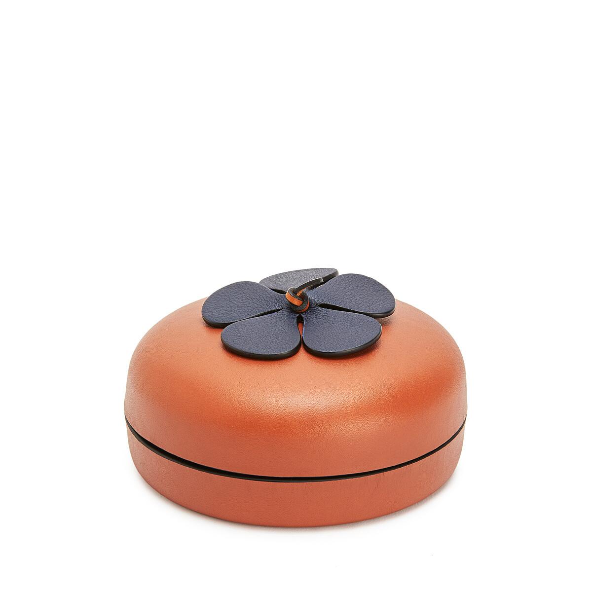 LOEWE Flower Box Tan/Blue front
