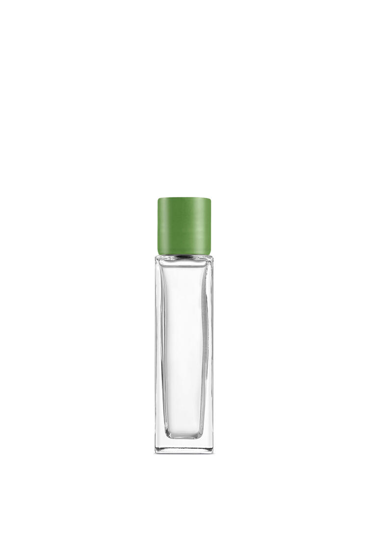 LOEWE Luscious Pea room spray Light Green pdp_rd