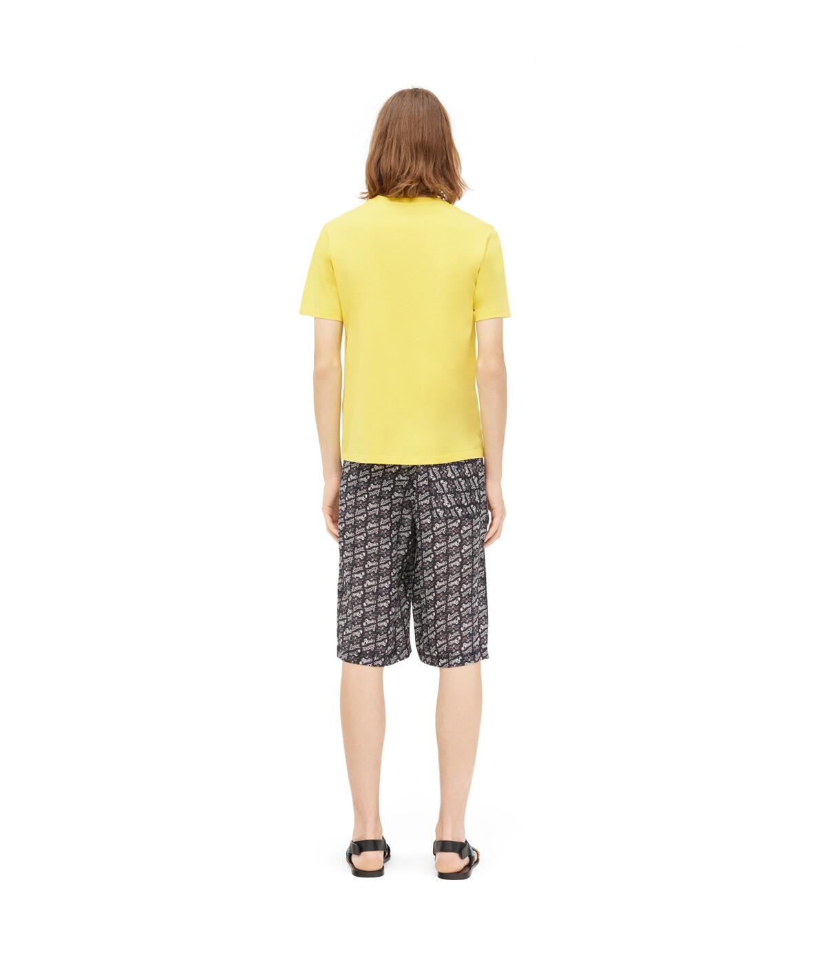 LOEWE Paula T-Shirt Amarillo front