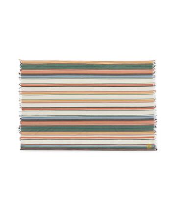 LOEWE 154 X182 Scarf Stripes White front